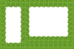Создайтесь от лист (Концепция рамки) иллюстрация вектора