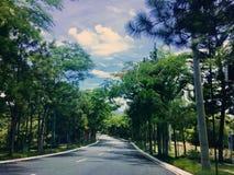 Создайте ваш путь Стоковая Фотография RF