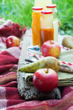 Соки плодоовощей свежие в бутылках на деревянной доске Стоковая Фотография RF