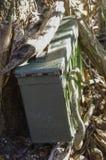 Сокровище Geocache Hiden Стоковые Фотографии RF
