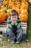 Сокрушанный мальчик на заплате тыквы стоковая фотография rf