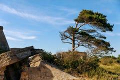 Сокрушенные воинские форты Стоковое Фото