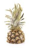 Сок ананаса изолированный на белизне Стоковое фото RF