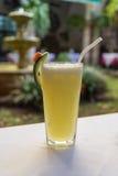 Сок ананаса Стоковые Изображения RF