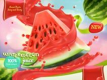 Сок арбуза fruits помадка вектор 3d Стоковое Изображение RF