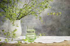 Сок березы стоковое фото