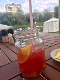 Сок в опарнике с апельсинами стоковое изображение