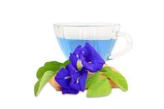 Сок гороха бабочки и цветки на белой предпосылке, здоровый fo Стоковые Фотографии RF