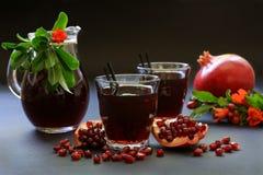 Сок гранатового дерева, плодоовощ, семена, ветви Стоковое Фото