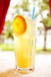Сок коктеиля плодоовощ и ягоды Стоковые Изображения