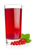 Сок красной смородины с свежей ягодой и зелеными лист Стоковое Изображение RF