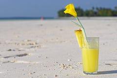 Сок на пляже Стоковая Фотография RF