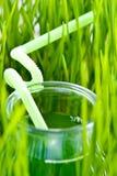 Сок травы Wheet Стоковые Изображения