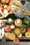 сок яблока свежий Стоковые Изображения