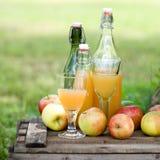 сок яблока свежий Стоковые Фотографии RF