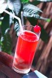 сок ягод стоковые фотографии rf