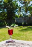Сок Roselle на деревянной таблице в лете Стоковая Фотография RF