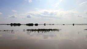 Сок Tonle, Камбоджа стоковые изображения rf