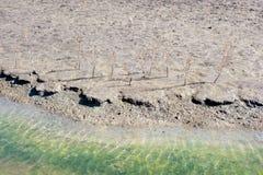 солеварница пруда детали Стоковое Фото