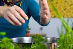 солить еды Стоковое Фото