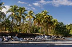 Солнечная береговая линия в тропической земле Стоковое Изображение RF