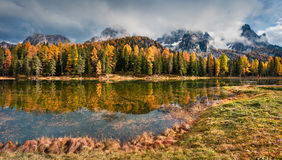 Солнечная внешняя сцена на озере Antorno Красочное утро осени в доломите Альпах, национальный парк Tre Cime di Lavaredo, Италия,  Стоковое Изображение RF