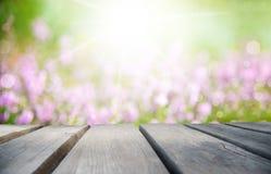 Солнечная деревянная доска с полем цветка Эрики как предпосылка стоковые изображения rf