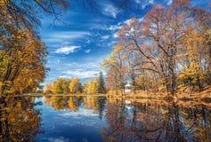 Солнечная осень в парке над озером стоковые фотографии rf