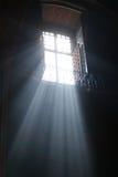 солнечний свет Стоковая Фотография RF