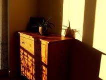Солнечное лето выравниваясь дома Стоковая Фотография