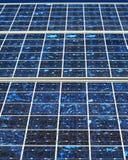 солнечное панели фотовольтайческое Стоковые Фотографии RF