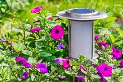 солнечное сада приведенное в действие светильником Стоковые Фото