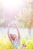 солнечность лета Стоковое Фото