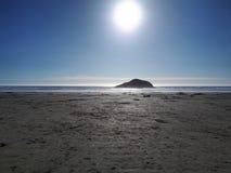 Солнечность Лонг-Бич Стоковая Фотография RF