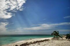 солнечность ancon Стоковая Фотография RF