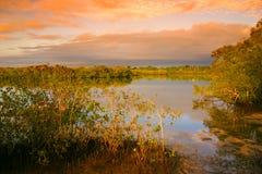 солнечность noosaville свободного полета Австралии Стоковые Изображения
