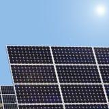 Солнечные заводы Стоковые Изображения RF