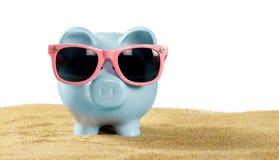 Солнечные очки копилки нося на пляже Стоковые Изображения