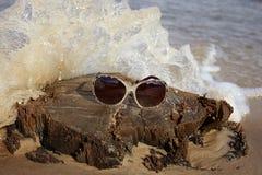 Солнечные очки на деревянном пне на море приставают к берегу Стоковое Изображение RF