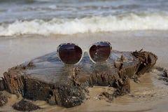 Солнечные очки на деревянном пне на море приставают к берегу Стоковое Фото