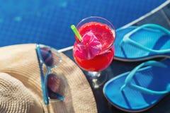 Солнечные очки цветка питья сока арбуза стеклянные Стоковые Фотографии RF