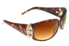 солнечные очки backgro коричневым изолированные способом белые Стоковые Изображения RF