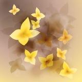 Солнечные цветки Стоковое фото RF