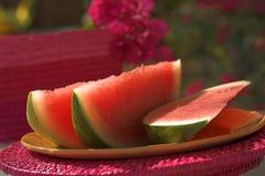 солнечный арбуз Стоковые Фотографии RF
