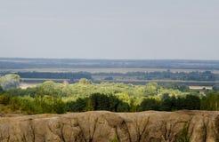 солнечный взгляд Стоковая Фотография RF