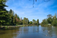 Солнечный день в парке стоковая фотография rf