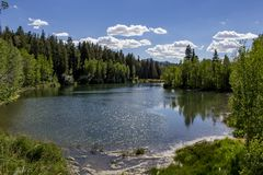 Солнечный день на озере McClellan Стоковые Фотографии RF