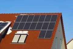 Солнечный завод Стоковое фото RF