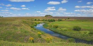 Солнечный ландшафт лета с кривой реки и расти на цветках берег реки берега реки желтых зацветая золотого solidago virgaureaeurope стоковое фото