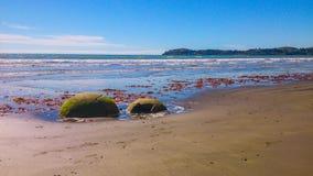 Солнечный пляж в Новой Зеландии стоковая фотография